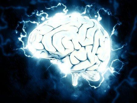 Раскрыт безотказный способ улучшить работу мозга