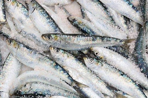 Названы опасные марки рыбы