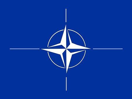 Times: НАТО разрушено в политическом плане