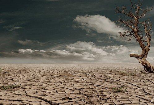 Предсказано неизбежное наступление катастрофических засух