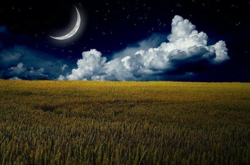 Новолуние в Овне: астролог рассказала, кому больше всех повезет - Стиль  жизни - Курс Денег